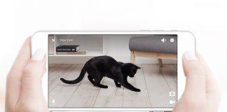 gadget gatos