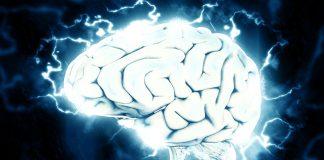 actividad cerebral después de la muerte