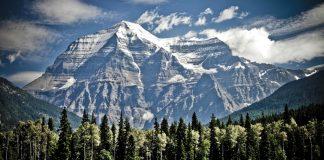 Día Mundial del Medio Ambiente Canadá