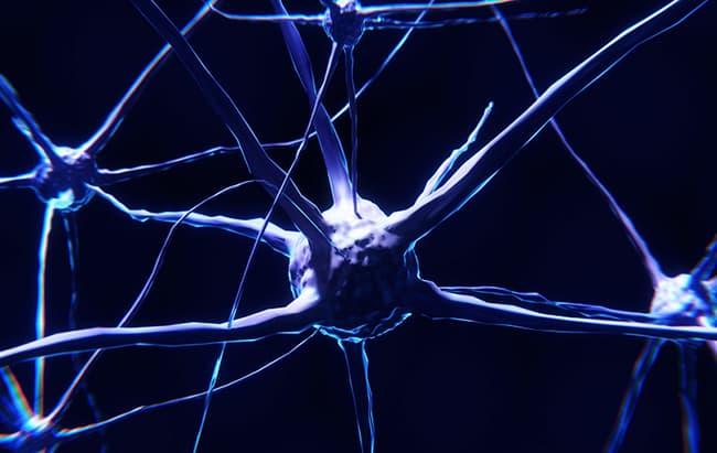 formación de memoria en el cerebro engramas silenciosos MIT