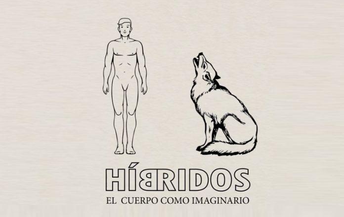 Híbridos. El cuerpo como imaginario, Museo de Bellas artes