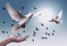Día Internacional de la Paz 2018 Día de la paz