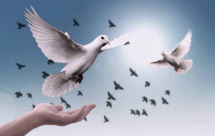 Primer Día Internacional de la Paz
