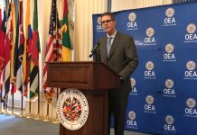 ataques cibernéticos OEA