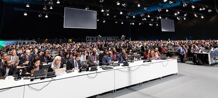 Conferencia de la ONU sobre Cambio Climático COP24