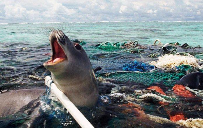 Océano Plástico redes de pesca
