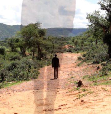 migración rural e internacional FAO