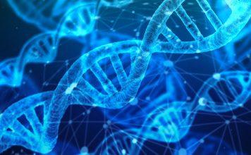 Cáncer infantil con investigación en genética UNAM