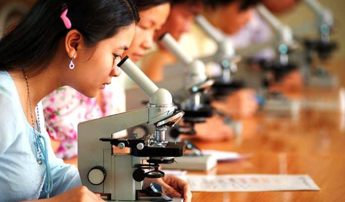 Día Internacional de la Mujer y la Niña en la Ciencia 2019