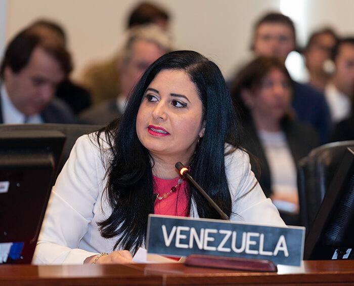 OEA nombra representante de la Asamblea Nacional de Venezuela