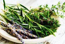 El tomillo y sus grandes propiedades para la salud